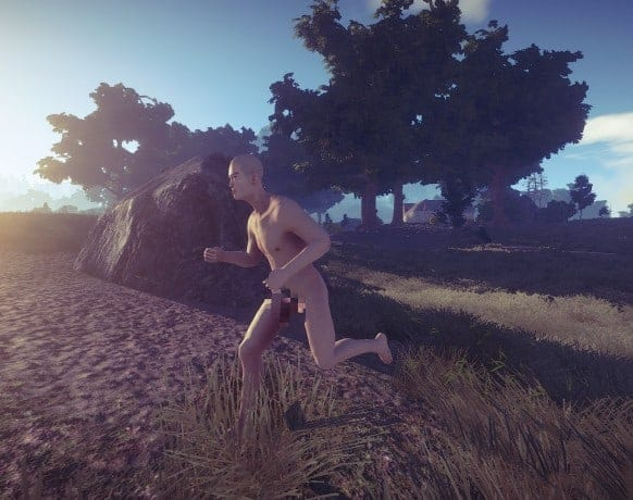 Rust download free pc game