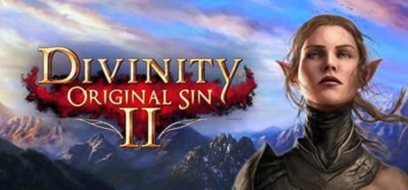 Divinity Original Sin 2 PC Game Download